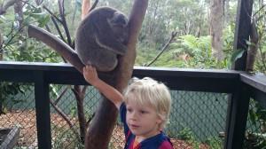 Här är när jag klappat en koalaunge i reptil djurparken i aus. Australien förkortas aus, smart va?!